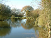 Claxby Fishery has 3 well stocked ponds