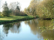 Claxby Fishery is situated in an area of outstanding natural beauty